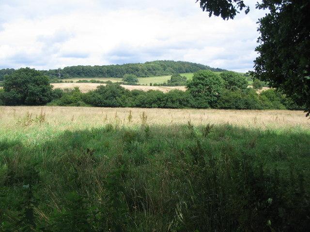 Farmland off Millbrook Lane