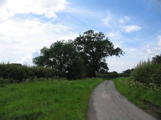 Tokes Lane