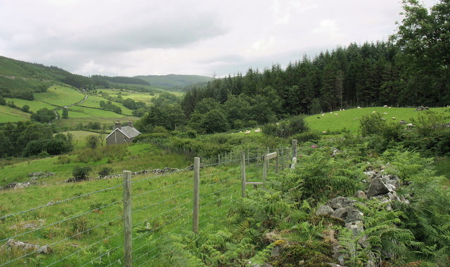 View back towards Tyddyn Du and the sheep grazing land