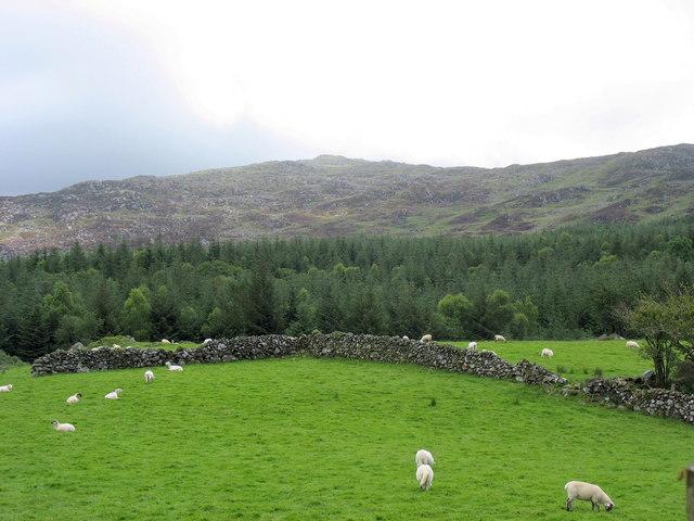 Farmscape, forestscape and wildscape - three contrasting environments in one square