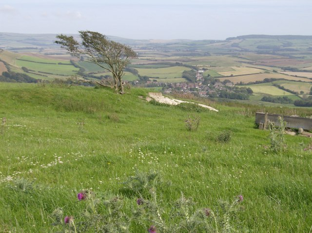 Looking down towards Shorwell