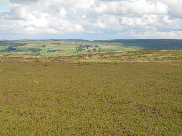 Moorland east of the Allendale lead smelting flue chimneys