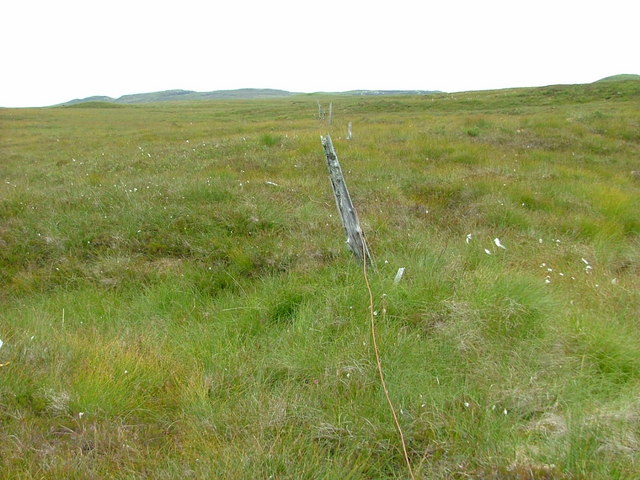 Old Fence on the Moorland