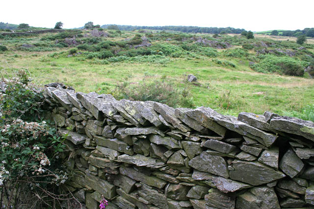 Slate wall on Cark Hall Allotment