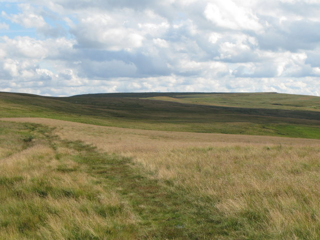 The track north of the Allendale lead smelting flue chimneys, and Dryburn Moor