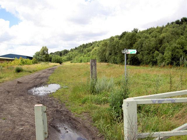 Trans Pennine trail.