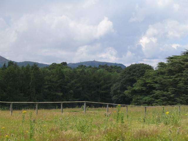 Towards Rodney's Pillar from Loton Park