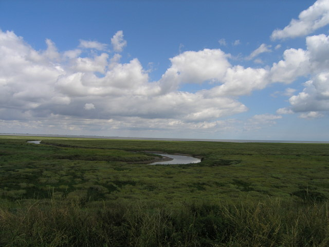 Salt Marshes and the Wash