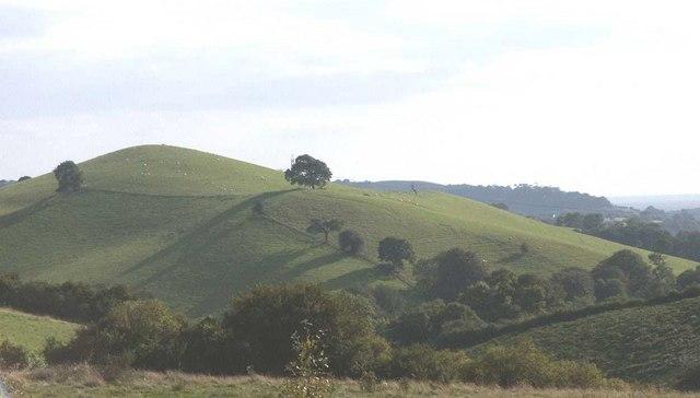 Knights Hill