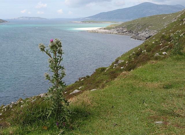 Harris coastline
