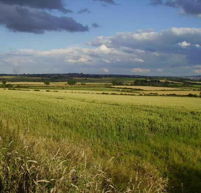 Looking towards Dewley Hill