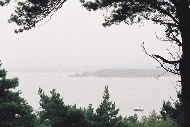 Furzey Island: misty view from Brownsea
