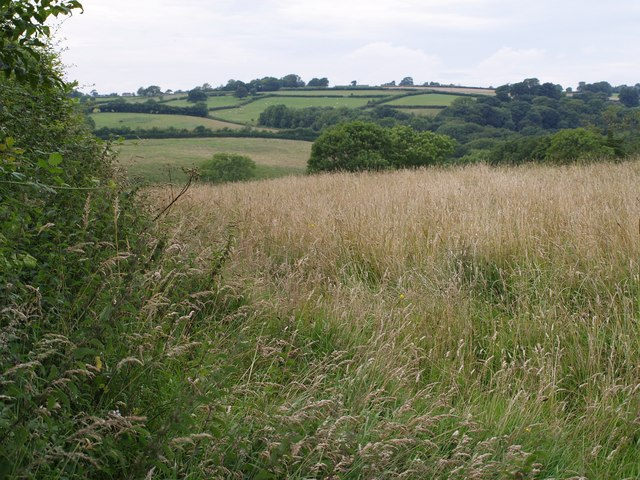 View near Westway