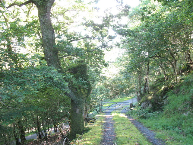 Track from Castell y Gwynt to minor road