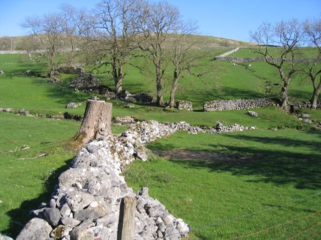 Stone Wall and Gordale Beck above Janet's Foss