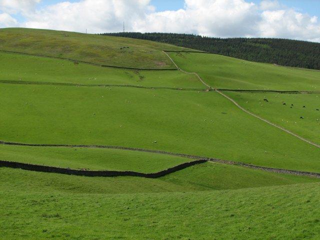 Fields below Mossilee Hill