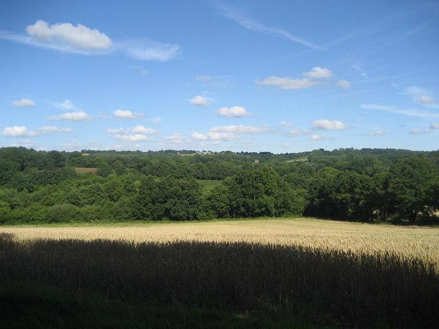 Field near to Furnace Farm