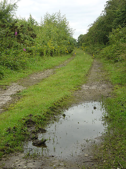 Private track with puddle