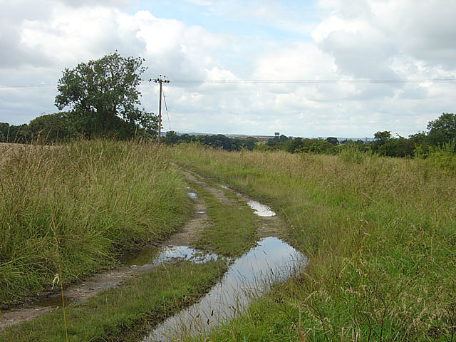 Field track near Rossington Hall