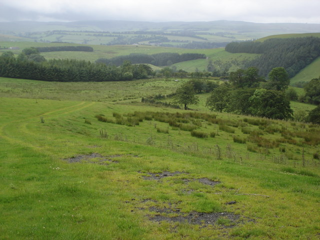 View west from Glyndwr's Way
