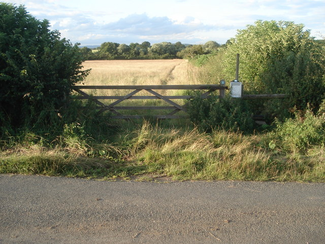 Lower Saleway Farm Meadows