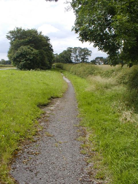 Footpath Alongside the A67