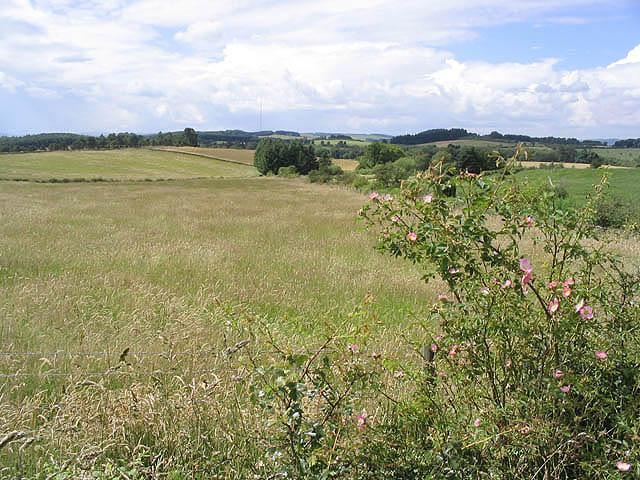 Farmland at Friarshawmuir