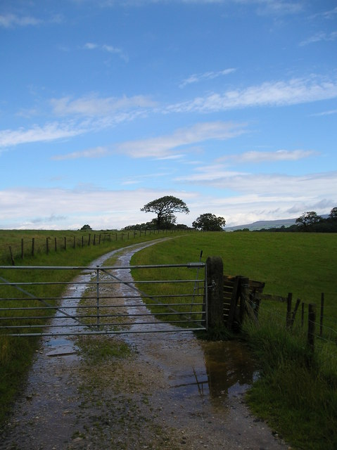 Bridlepath near Fell End