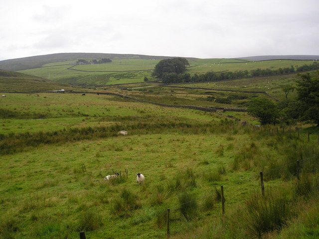 View from the footpath to Fell End