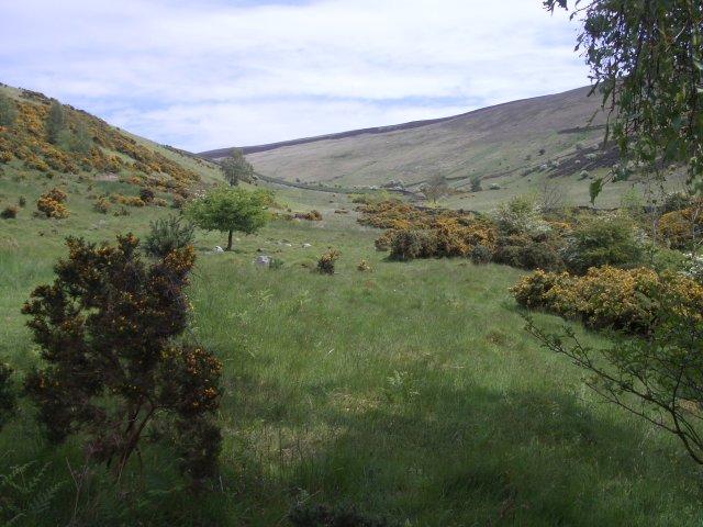 Blakehope Burn valley