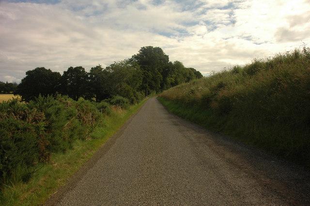 Public road looking toward Moniack Winery
