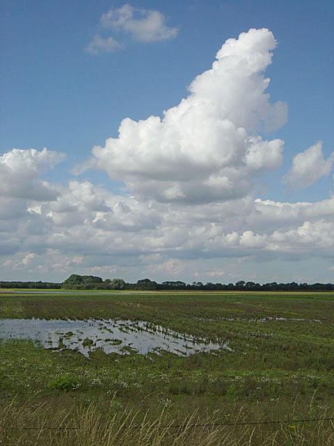 Waterlogged field near Misson Grange