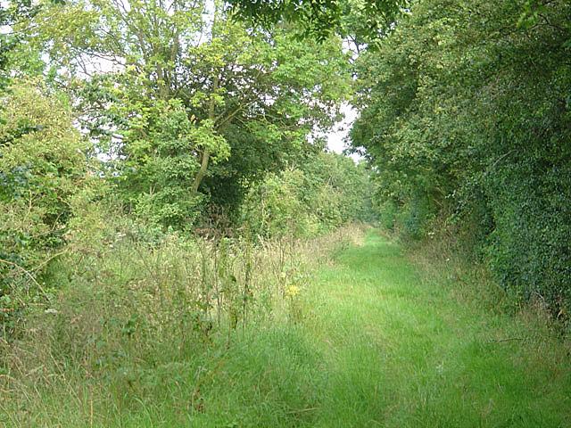 Bridleway near Springs Farm