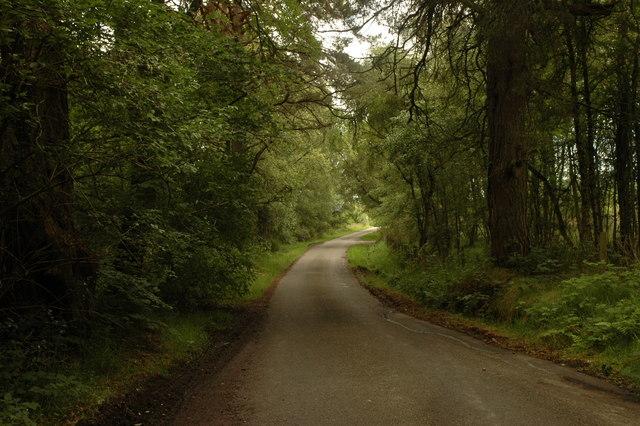 road round Camault Muir