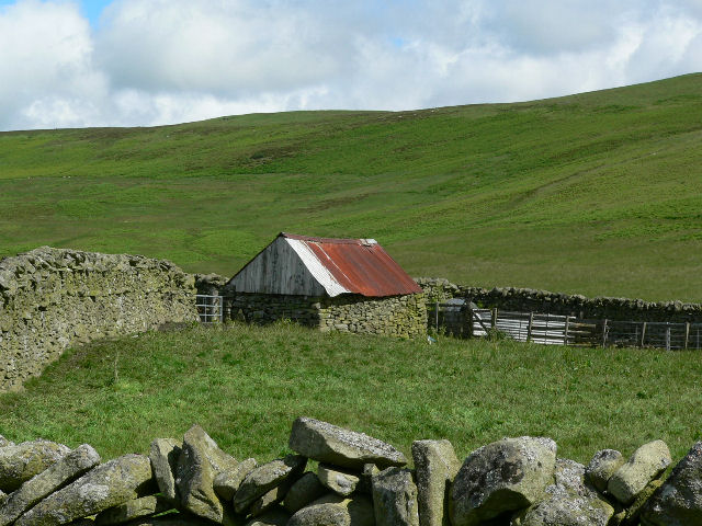 Shepherds hut below Singlie Hill