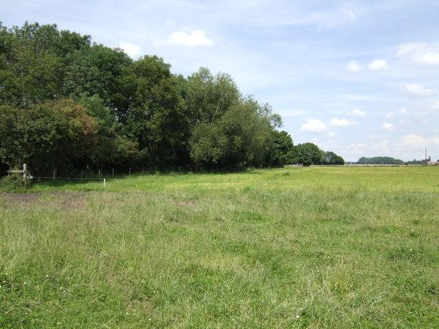 Borderline arable field