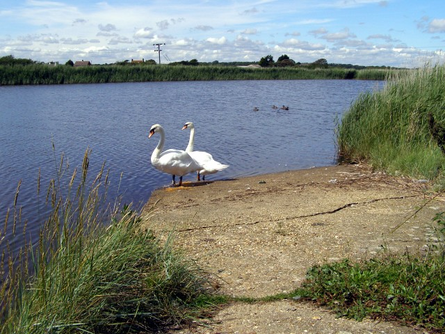 Balancing pond at the end of Avon Water, Keyhaven