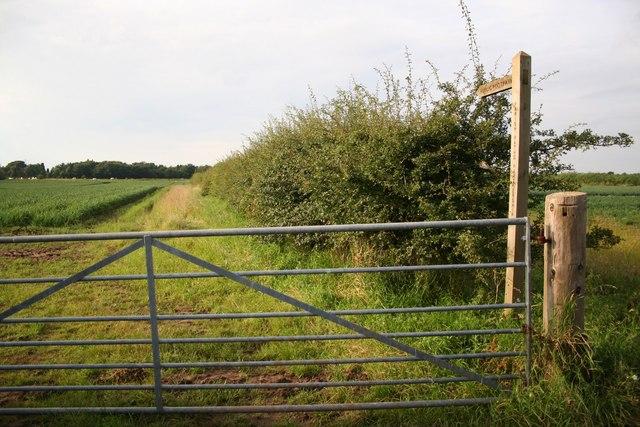 Footpath from Church Lane