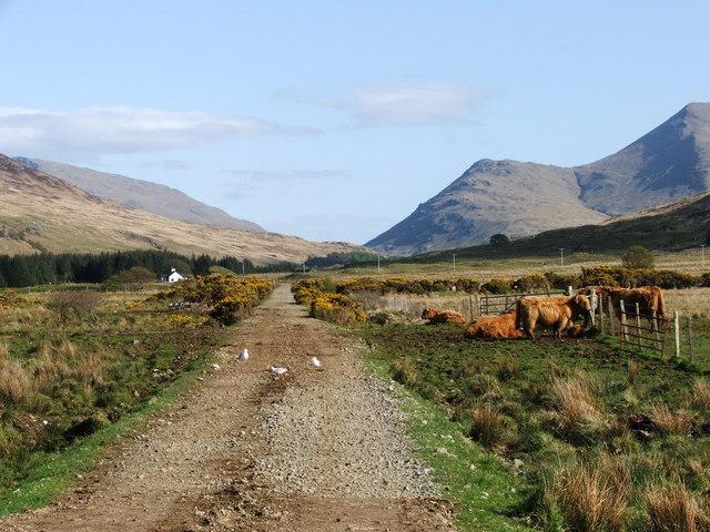 View up Glenforsa, toward Beinn Bheag & BeinnTalaidh