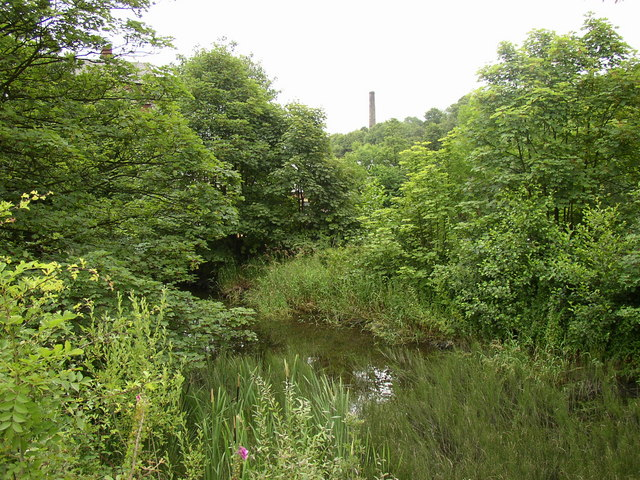 Millpond, Ramsden Mills, Golcar