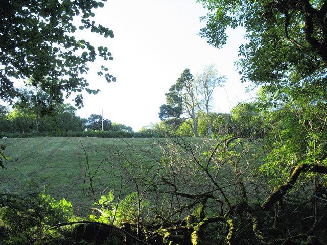 View upslope towards the minor road