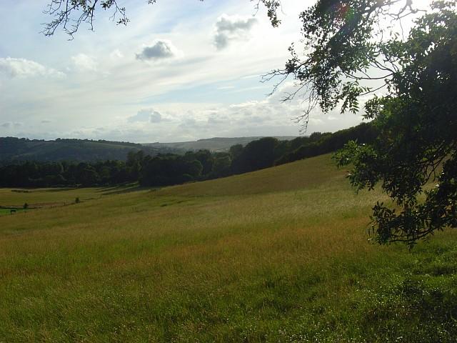 Grassland, Goring