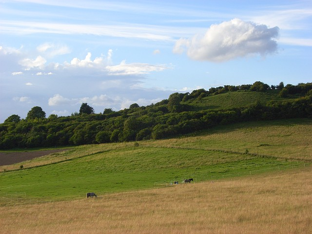 Hillside above Goring