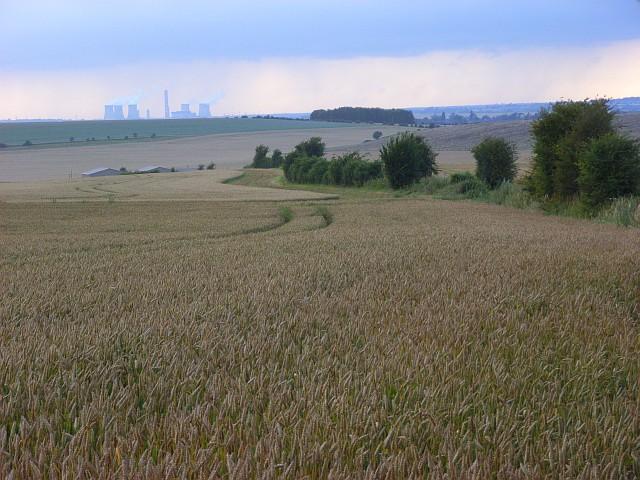 Farmland, Woodcote