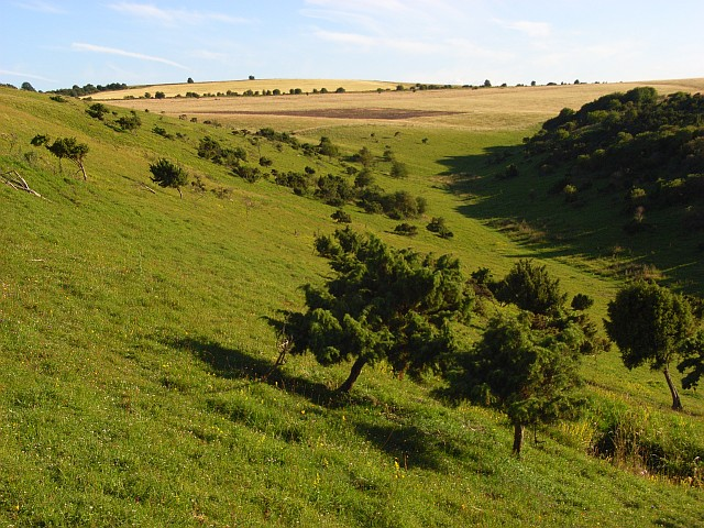 Aston Upthorpe Downs