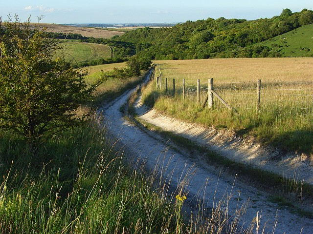 Byway, Aston Upthorpe Downs