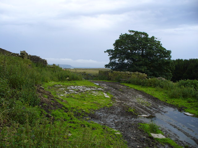 The ruins of Picker Hill Farm