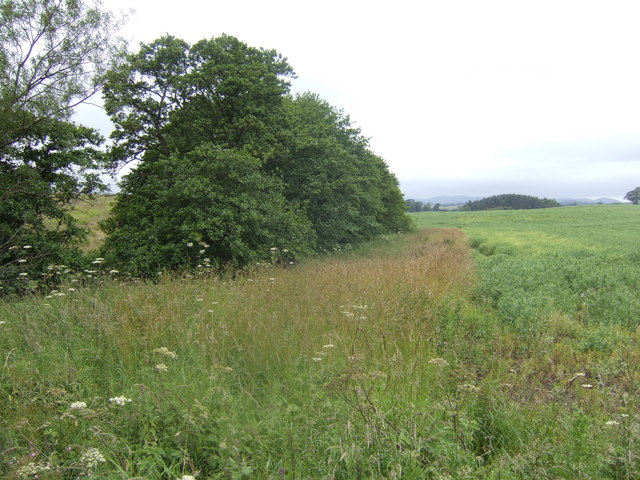 Course of the Folly Burn