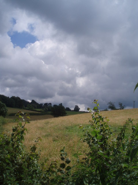 Fields, East Ogwell