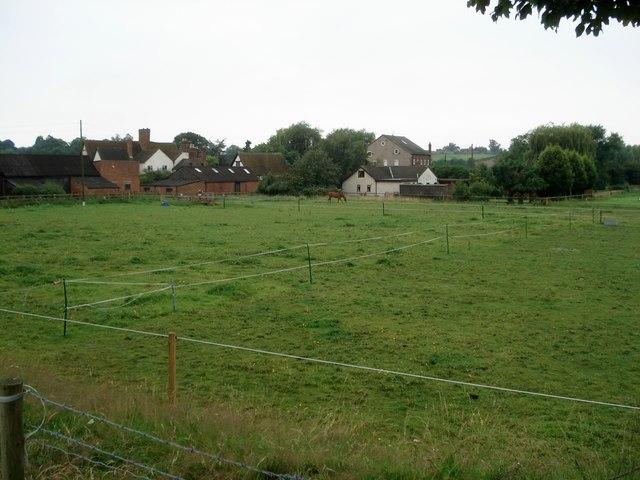 Horse paddocks near Porter's Mill
